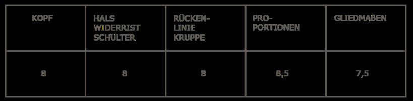Tabelle_Hvinur